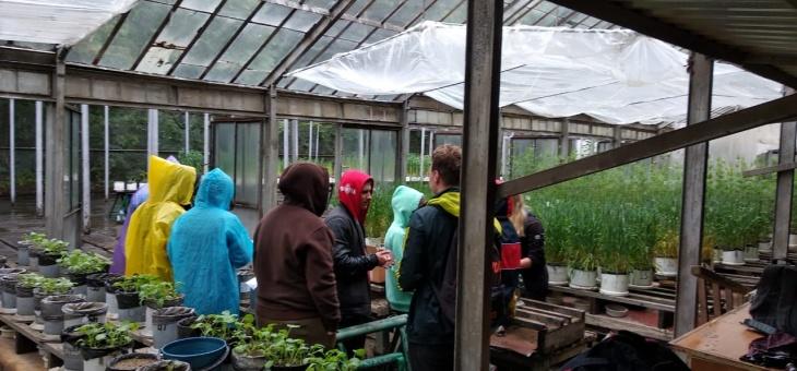 Учебная практика по сельскохозяйственной экологии
