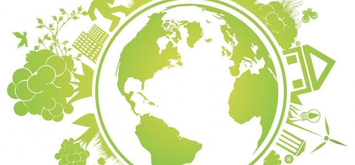 ПРОЕКТ Положения об официальном сайте кафедры экологии