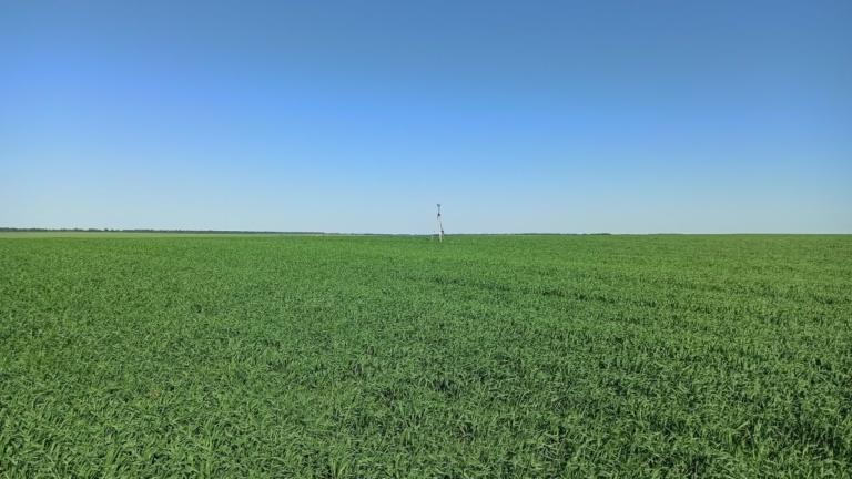 Высотная съёмка с применением GNSS